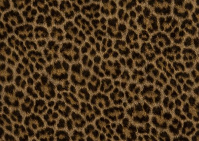 008-selectaparati-animalier-255053