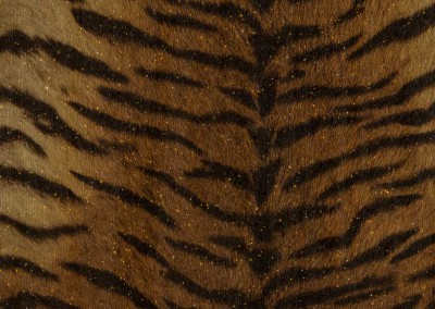 009-selectaparati-animalier-255061