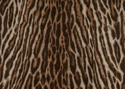034-selectaparati-animalier-255058
