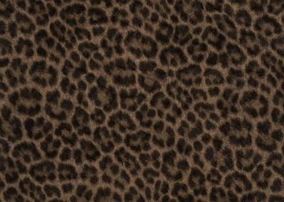 036-selectaparati-animalier-255054